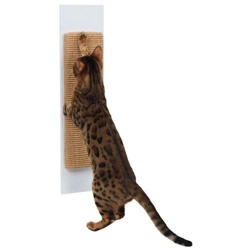 Dieren > Katten > Krabplank