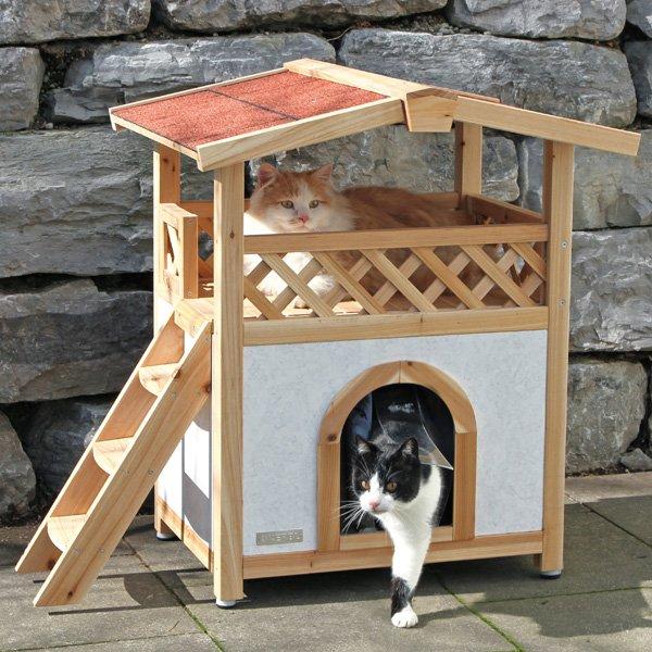Dieren > Katten > Kattenhuis